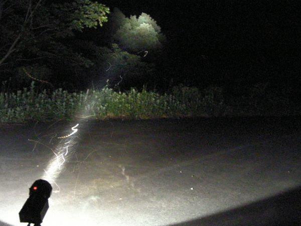 灯火採集20080622